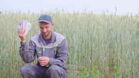 Молодой фермер имеет много деньги Концепция успеха дела в земледелии сток-видео
