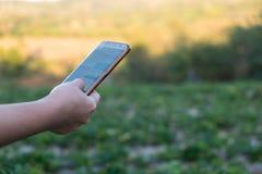 Молодой фермер наблюдающ овощем некоторых диаграмм, который хранят в мобильном телефоне, ферме 4 Eco органической современной умн стоковое фото