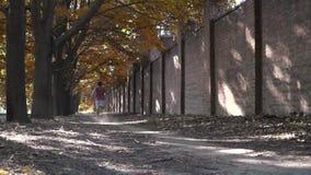 Молодой человек бежит прочь около кирпичной стены, замедленного движения, драматического Молодой человек с социальными вопросами сток-видео