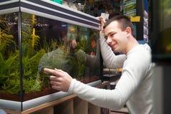 Молодой человек выбирая тропических рыб Стоковое Фото