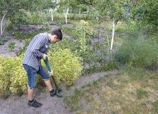 Молодой человек делает сезонные работы в саде стоковые фотографии rf