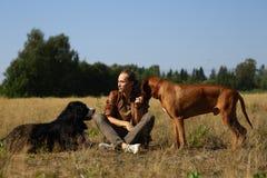 Молодой человек идя с собакой горы Bernese 2 собак и ridgeback на поле лета стоковые фотографии rf
