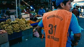 молодой человек нажимая тачку для того чтобы транспортировать овощи на рынок фермера города стоковые изображения rf