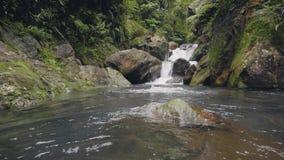 Молодой человек плавая на речной воде пропуская от тропического водопада в человеке тропического леса счастливом наслаждаясь пото акции видеоматериалы