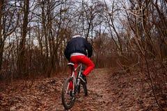 Молодой человек с велосипедом катания рюкзака на дороге горы в лесе стоковое фото rf