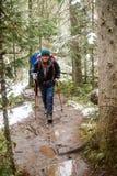 молодой человек с рюкзаком в лесе Стоковое Изображение