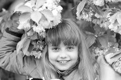 Молодость, цветене, свежесть стоковое изображение