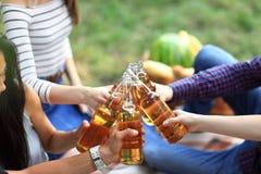 Молодые друзья имея потеху outdoors, clinking бутылки пива Стоковая Фотография