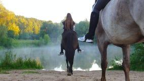 Молодые женщины верхом входят озеро в раннее утро, туман видеоматериал