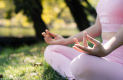 Молодые женщины делают йогу в парке Стоковое Изображение