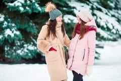 Молодые женщины outdoors на красивый день снега зимы Стоковое Изображение RF