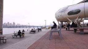 Молодые корейские люди сидя совместно на парке говоря и связывая, образ жизни Сеула видеоматериал