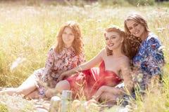 Молодые красивые женщины на пикнике в лете паркуют Стоковое Фото