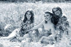 Молодые красивые женщины на пикнике в лете паркуют Стоковое Изображение