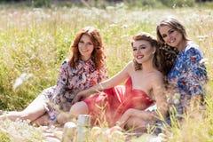 Молодые красивые женщины на пикнике в лете паркуют Стоковые Фотографии RF