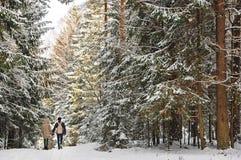 Молодые красивые пары в влюбленности идя совместно в парк зимы стоковые изображения rf