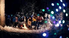 Молодые люди в лесе зимы сидя огнем Люди сидя в их телефонах и усмехаться видеоматериал