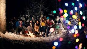 Молодые люди в лесе зимы сидя огнем Люди сидя в их телефонах акции видеоматериалы