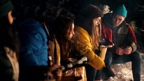 Молодые люди в лесе зимы сидя огнем Нагревать marshmello огнем акции видеоматериалы
