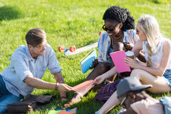 Молодые многонациональные студенты говоря и изучая совместно в парке Стоковые Изображения