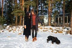 Молодые нежные пары в любов идя в парк зимы с собакой стоковая фотография
