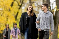 Молодые пары в влюбленности идя в парк Стоковые Фото