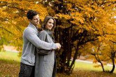 Молодые пары в влюбленности идя совместно в парк Стоковая Фотография