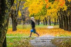 Молодые пары идя в парк осени Стоковая Фотография