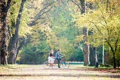 Молодые пары, красивый человек и привлекательная женщина на тандемном велосипеде в солнечном парке или лесе лета стоковое изображение