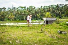 Молодые пары медового месяца идя среди полей риса Красивое отключение newleds к острову Бали, Индонезии Природа, лето стоковые изображения rf