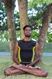 Молодые практикующий врачи человека йоги делая йогу на природе Азиатский индийский человек yogis на траве в парке Остров Бали Стоковые Изображения