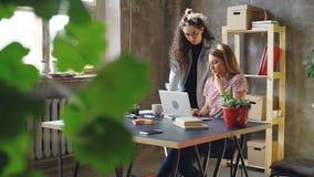 Молодые предприниматели мелкого бизнеса работают с компьтер-книжкой в современном офисе стиля просторной квартиры Блондинка сидит акции видеоматериалы