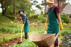 Молодые садовники обернутые вверх в работе Стоковая Фотография