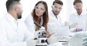 Молодые ученые обсуждая результаты экспериментов в лаборатории Стоковое Изображение