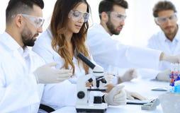 Молодые ученые обсуждая результаты экспериментов в лаборатории Стоковые Изображения