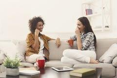2 молодых женских друз с кофе беседуя Стоковые Фотографии RF