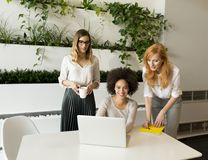 3 молодых коммерсантки в офисе Стоковые Фотографии RF
