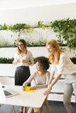 3 молодых коммерсантки в офисе Стоковые Изображения