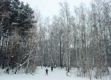 2 молодых красивых девушки идут кататься на лыжах в зиме на наклоне лыжи Стоковые Фотографии RF