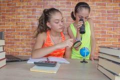 2 молодых привлекательных девушки студента изучая уроки Стоковое фото RF