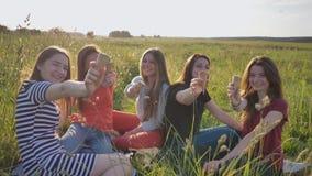 5 молодых школьниц едят и демонстрируют мороженое на луге на теплый летний день видеоматериал