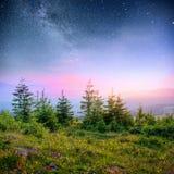 Молокозавод Звездный путь в древесинах Драматическая и живописная сцена Фантастическое звёздное небо и млечный путь стоковое фото