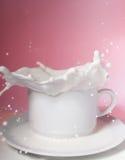 молоко брызгает Стоковая Фотография RF