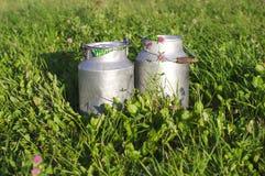 молоко зеленого цвета травы контейнеров клеверов Стоковые Фотографии RF