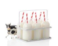 молоко клети коровы Стоковое Фото