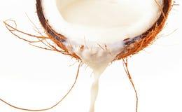 молоко кокоса Стоковое Фото