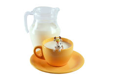 молоко коровы Стоковое Фото