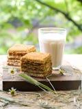 молоко торта Стоковое фото RF