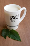молоко чашки Стоковые Фото