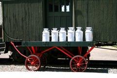 молоко чонсервных банк Стоковая Фотография